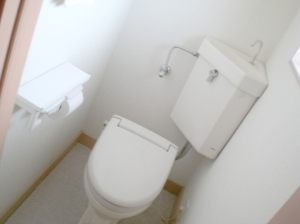 The shoe-box sized upstairs bathroom.